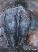 'Nashorn von hinten', Pastellkreide auf Papier, 48x36, 2003
