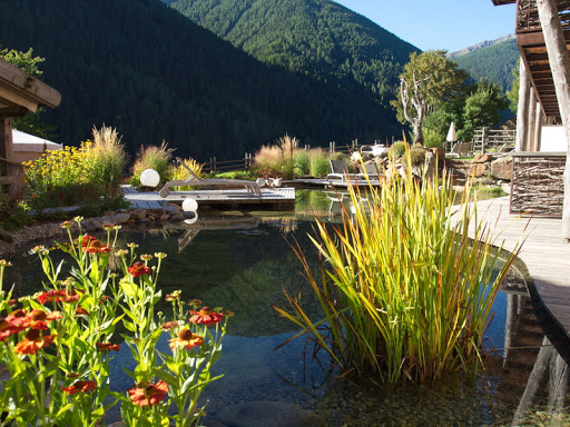 Zierteiche Gartengestaltung  Natacharousselcom