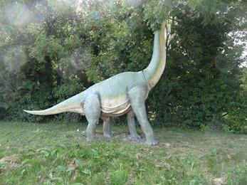 2017.08.07-053 brachiosaure