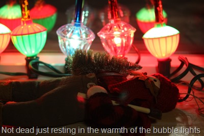 Not dead resting in the warmth of the bubble lights