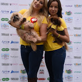 OIC - ENTSIMAGES.COM - Victoria Eisermann and Pola Pospieszalska at the  PupAid Puppy Farm Awareness Day 2015 London 5th September 2015 Photo Mobis Photos/OIC 0203 174 1069