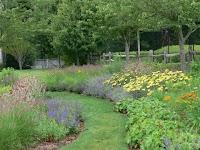 A path defines a perennial garden.