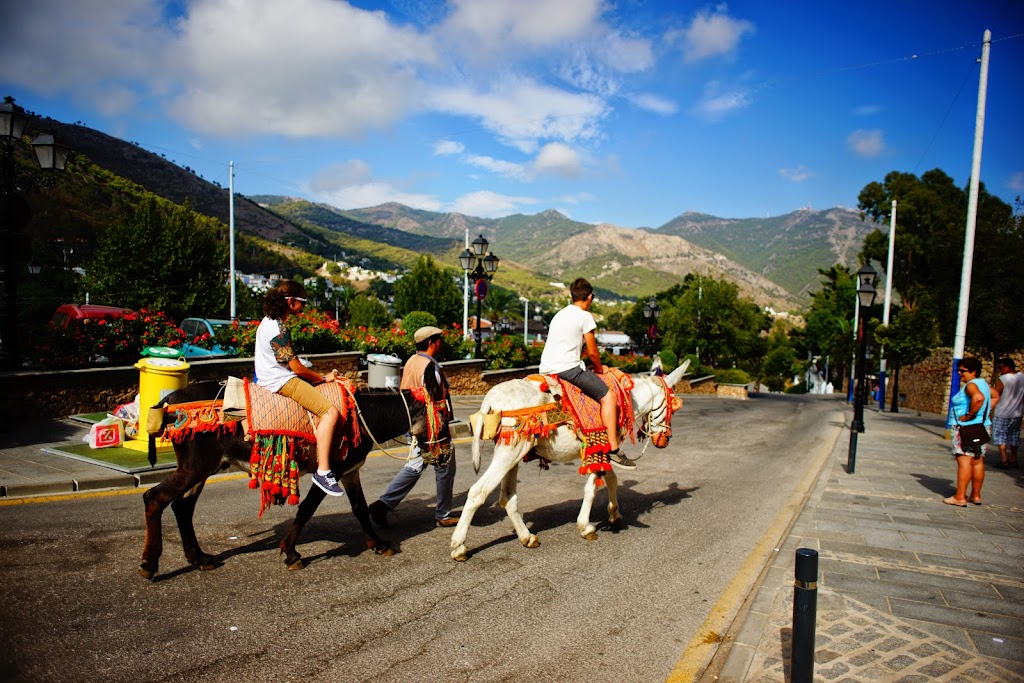 riding burrotaxi in Mijas
