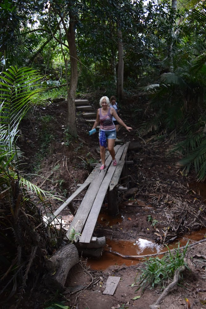 On the opposite side of the bridge we find a short trail into the jungle....