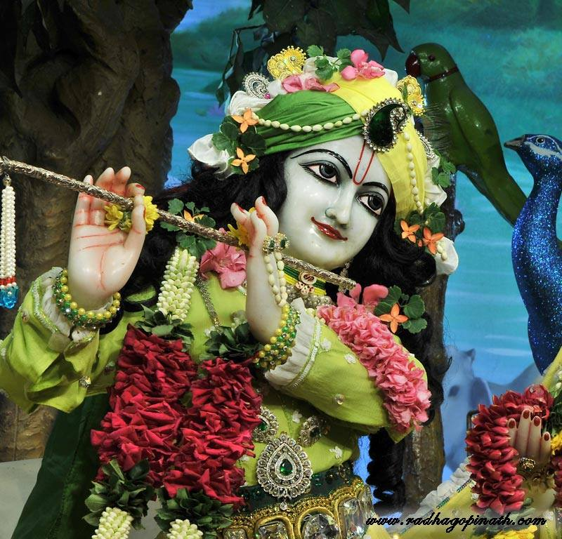 ISKCON Chowpatty Deity Darshan 12 Feb 2016 (14)