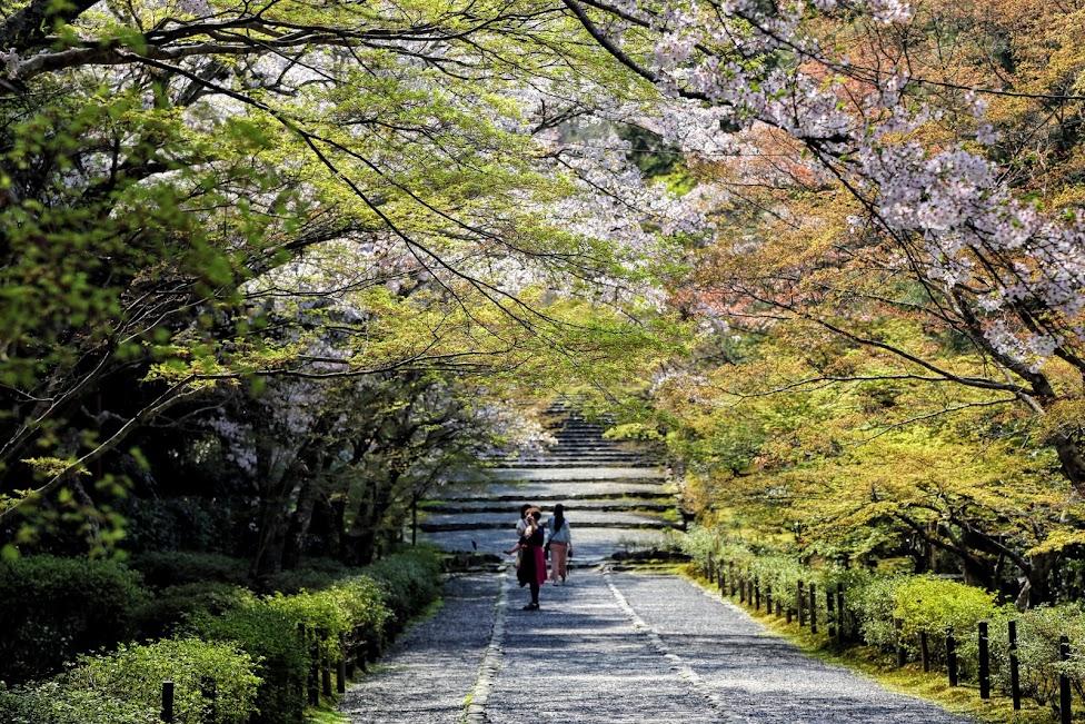 atrakcje Kioto, Arashiyama, Kioto