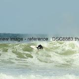 _DSC8883.thumb.jpg