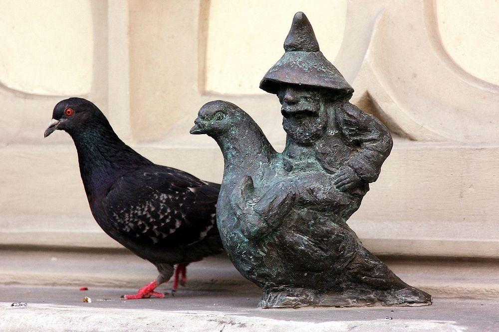 wroclaw-dwarves-9