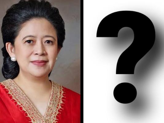 Siapa Calon yang Pas untuk Dampingi Puan Maharani?