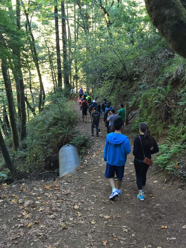 2014-11-09 Cataract Falls Hike - IMG_3209.JPG