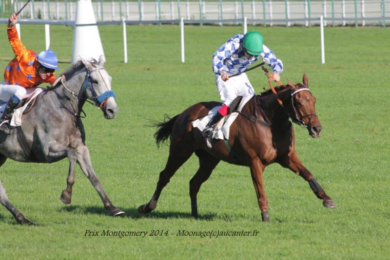 Photos Auteuil 18-10-2014 IMG_5044