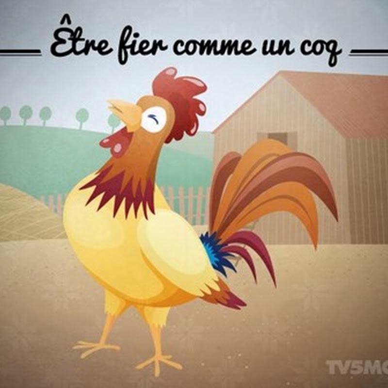 """Ungkapan: """"Être fier comme un coq"""""""