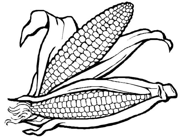[maiz-1%5B2%5D]