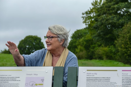 Mary Gibbons Newgrange Tours on the Hill of Tara (1 of 1)