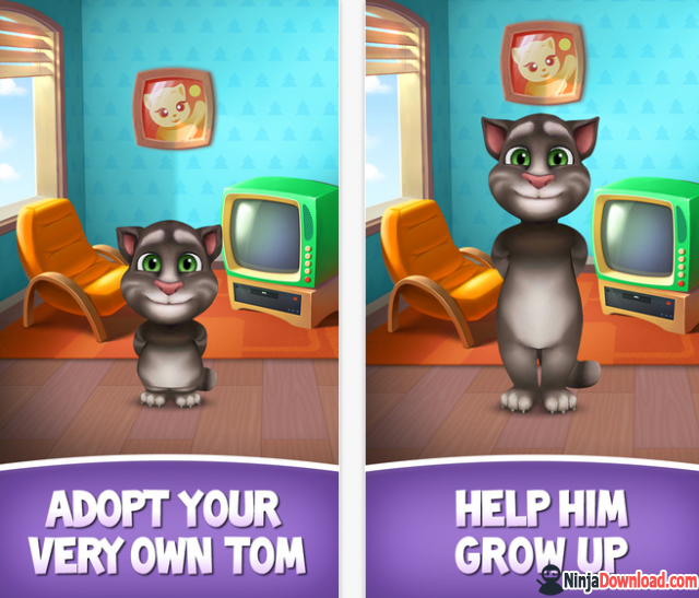 About my talking tom game