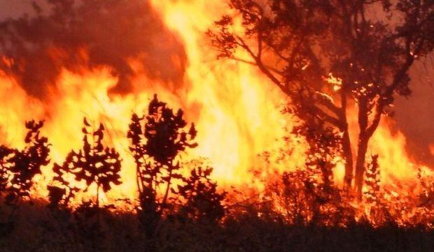 queimadas(4)