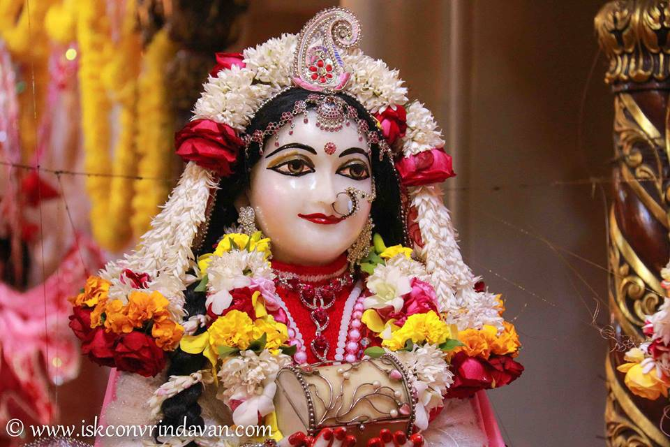 ISKCON Vrindavan Sringar Deity Darshan 06 Jan 2016 (9)