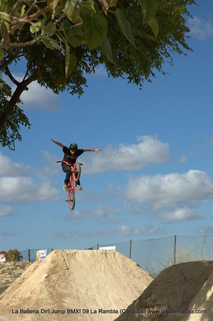 Ballena Dirt Jump BMX 2009 - BMX_09_0009.jpg