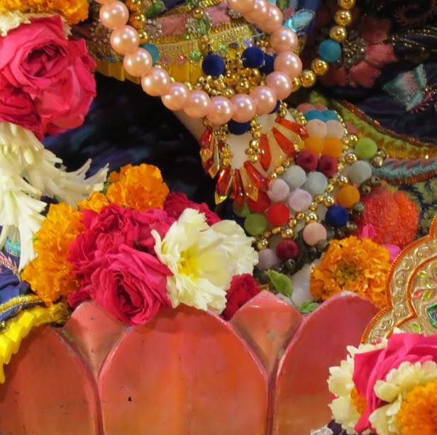 ISKCON Vallabh vidhyanagar Deity Darshan 17 jan 2017 (6)