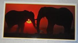 221 11-carte postale