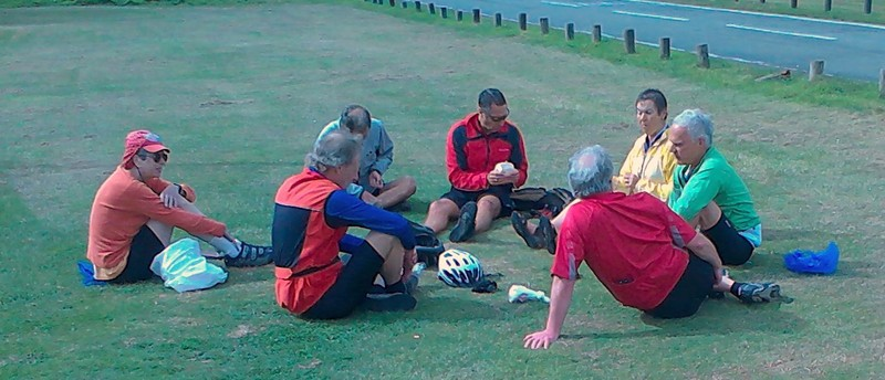 group having picnic on grass