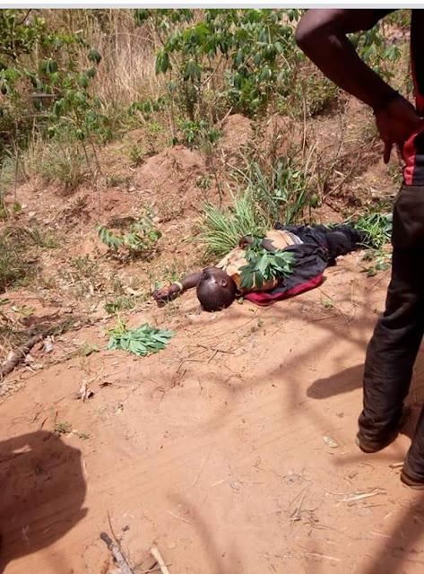 Farmers & Fulani Herdsmen Clash In Kogi, Many Killed (Viewers' Discretion Advised!!)  IMG_20180316_120020_133