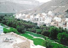 وادي عمد