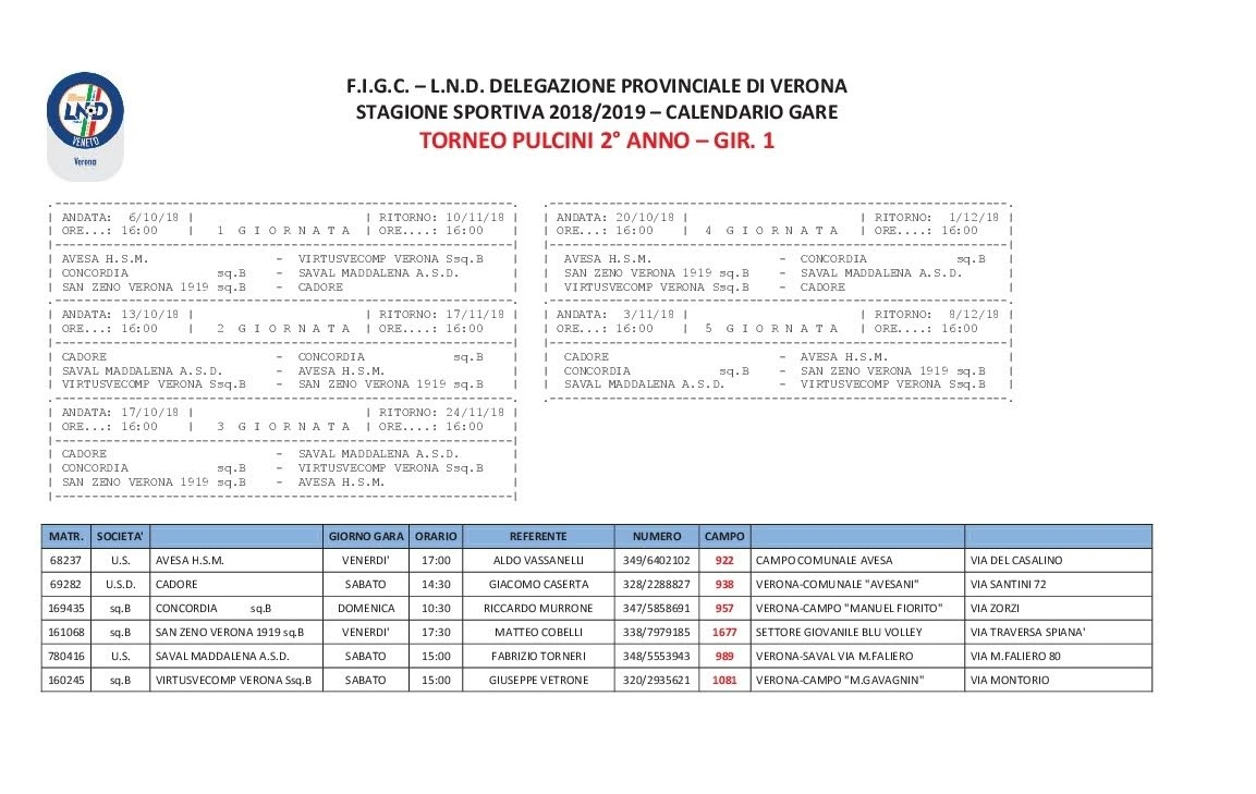 Calendario Pulcini 2006.Torneo Pulcini 2018 2019 Calendario Gare Ahsm 1911