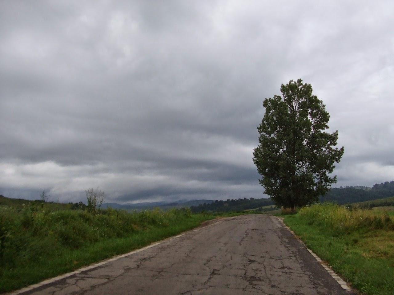 Székelyzsombor 2010 - img09.JPG