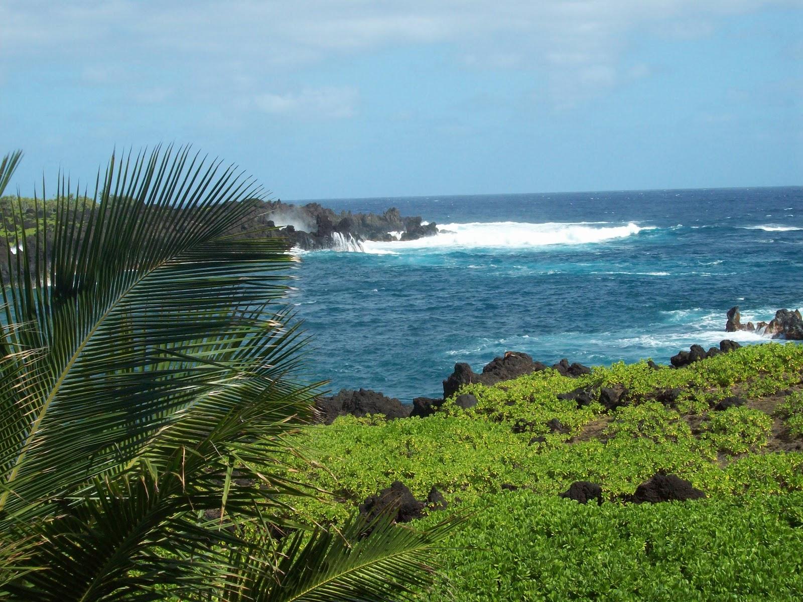 Hawaii Day 5 - 114_1514.JPG