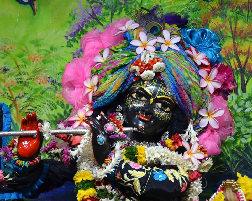 ISKCON Nasik Deity Darshan 03 Feb 2016 (4)