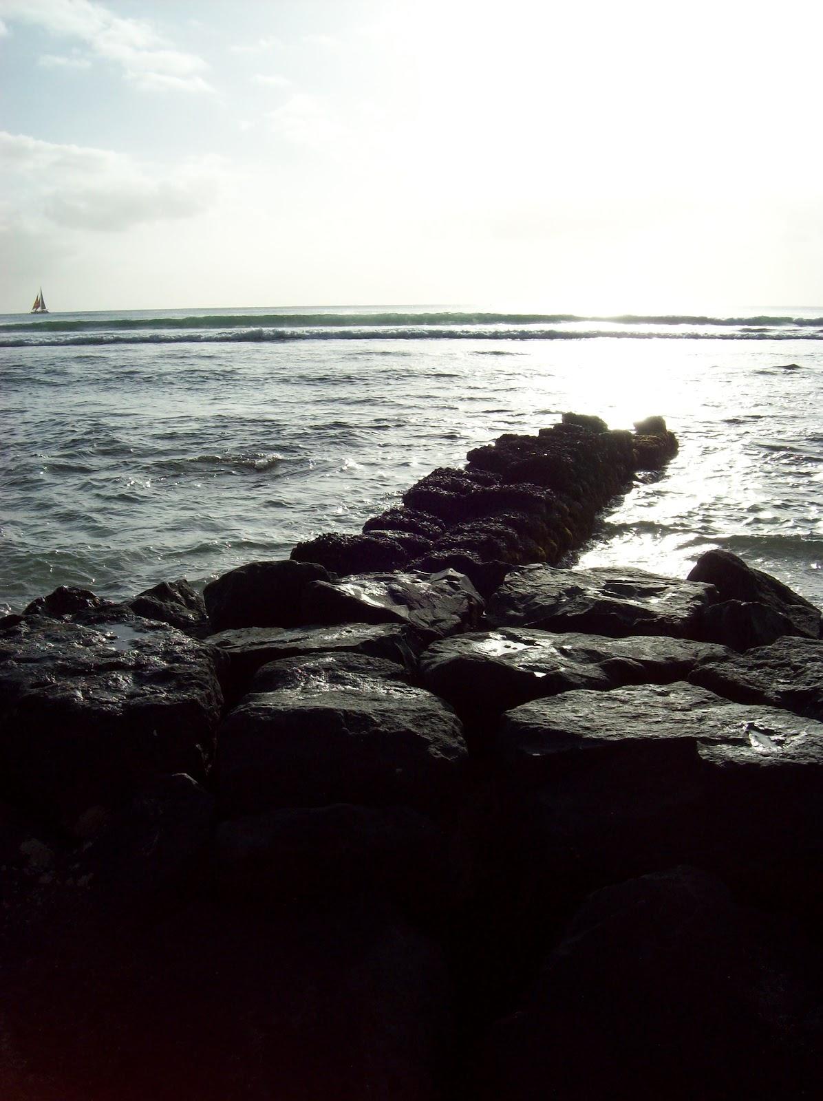 Hawaii Day 2 - 100_6722.JPG
