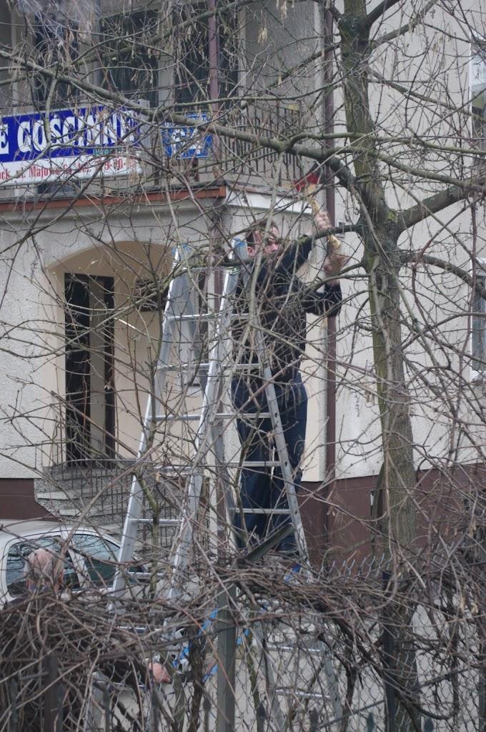 Belsk - Świerk 2011 (Kiń) - PENX2136.jpg
