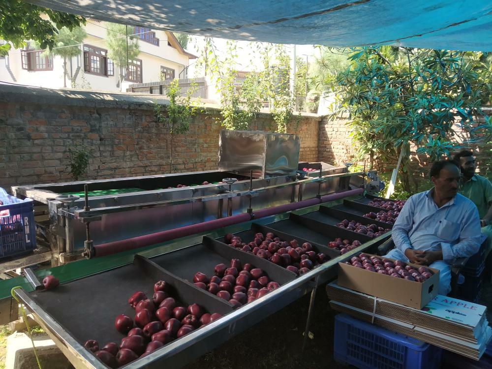 First ever apple grading machine inauguted at J&K's Pulwama