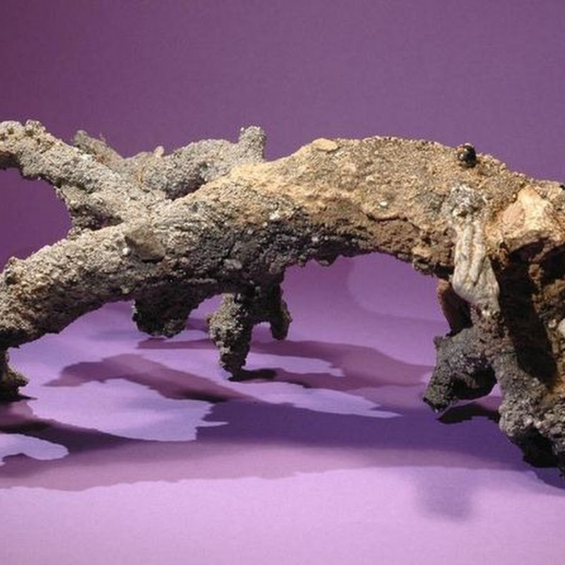 Fulgurite: What Happens When Lightning Strikes Sand
