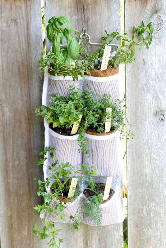 hanging herb garden-004_2966345