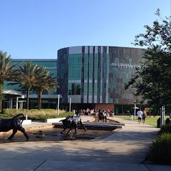 University of South Florida's profile photo