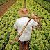 Mais crédito para produtores rurais capixabas