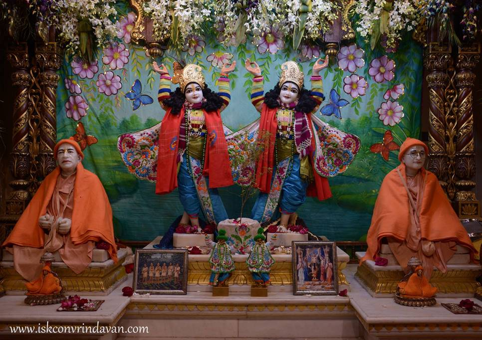 ISKCON Vrindavan Mangal Deity Darshan 27 Feb 2016 (3)