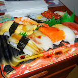 enjoying a sushi tray for dinner in Tokyo, Tokyo, Japan