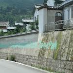 225china2008.jpg
