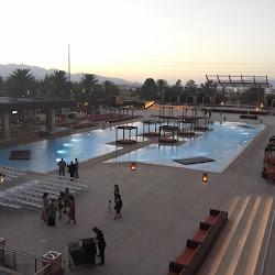 The M Resort Spa Casino's profile photo