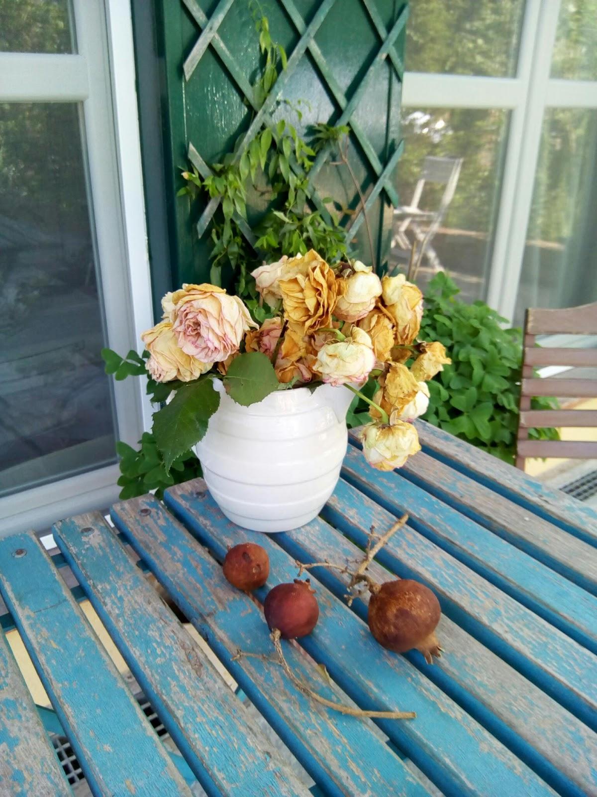 Anche Appassite Le Rose Sono Bellissime