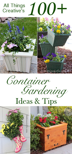 100 plus Container Gardening Tips and Tricks