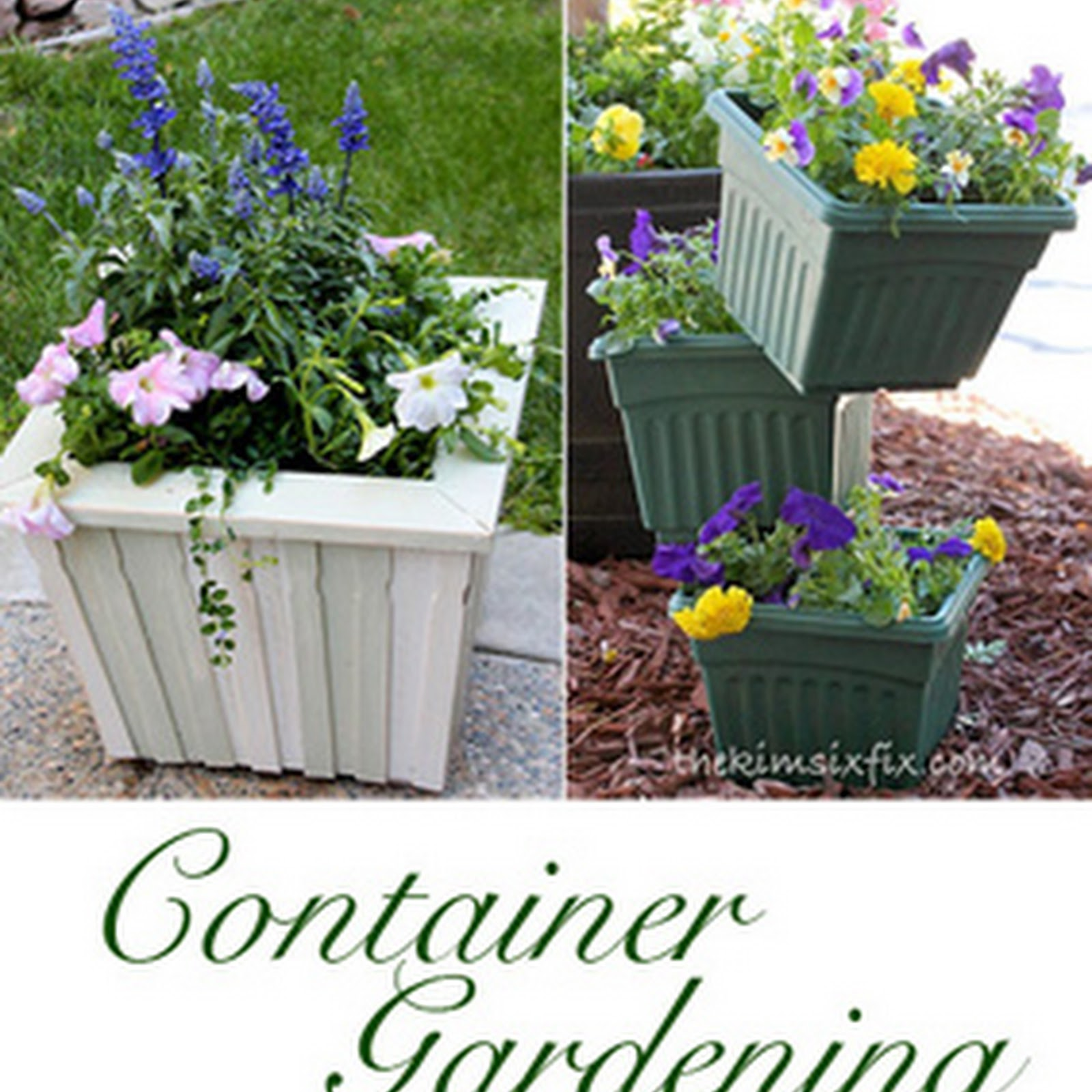 Container Garden Ideas: 100+ Easy Container Garden Ideas