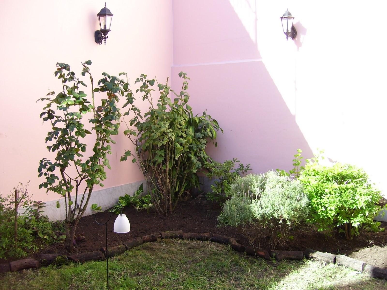 Jardineria y paisajismo en gerenal limpieza de canteros y for Plantas paisajismo