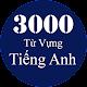 3000 Từ Vựng Tiếng Anh Thông Dụng APK