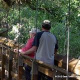 04-06-12 Myaka River State Park - IMGP4427.JPG