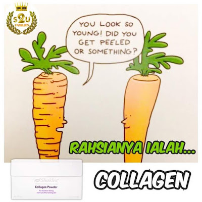 kulit tegang dengan COLLAGEN POWDER SHAKLEE