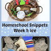 Tot School Snippets Week 1: Ice